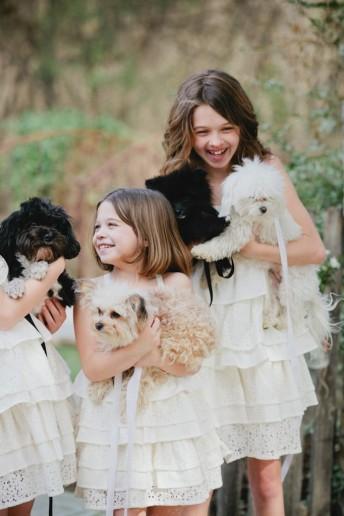 dressed-pet-mascota-vestido-boda-3-682x1024
